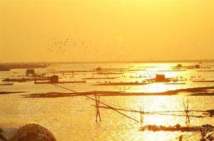 柘林渔火——潮州新八景之一